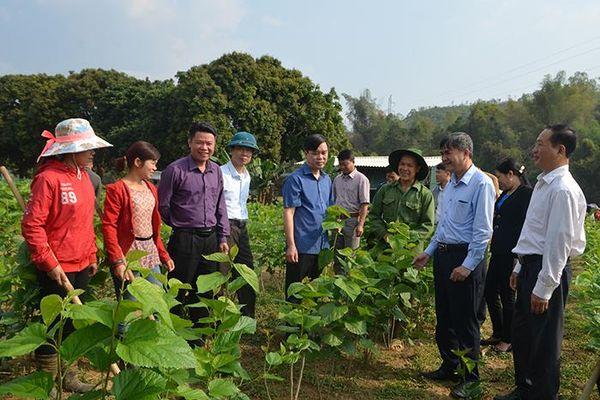 Huyện Văn Chấn (Yên Bái): Quyết tâm tạo đột phá trong xây dựng nông thôn mới