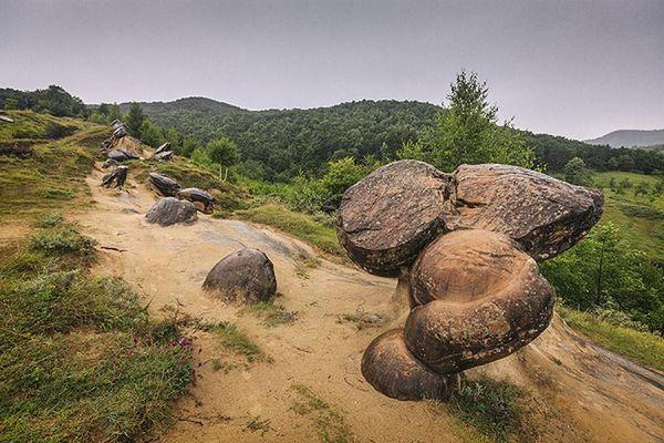 Kỳ lạ những hòn đá tự 'lớn lên', 'dịch chuyển' y như con người