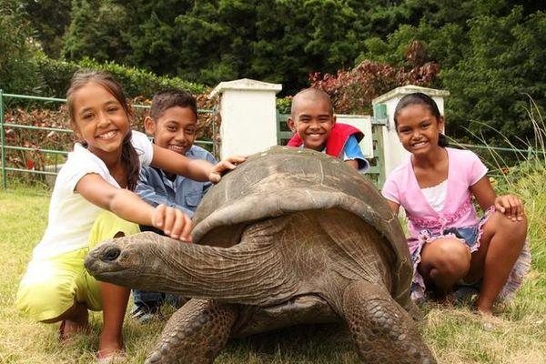Kỳ lạ câu chuyện 'cụ Rùa' già nhất thế giới