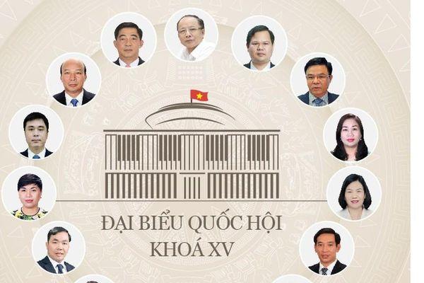 Chân dung 15 doanh nhân trúng cử Đại biểu Quốc hội khóa 15
