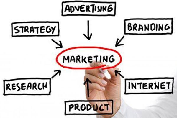 Làm sao để tạo một kế hoạch tiếp thị LMS toàn diện?