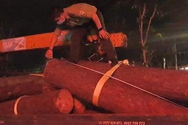 Nhân viên quản lý, bảo vệ rừng 'thuê' người khai thác gỗ mang đi bán
