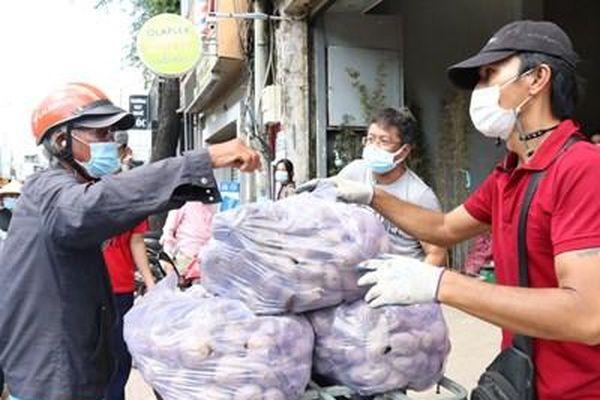 Chung tay tiêu thụ khoai lang tím cho nông dân Vĩnh Long