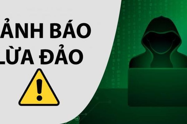 Hơn 12.000 website Việt Nam có yếu tố giả mạo