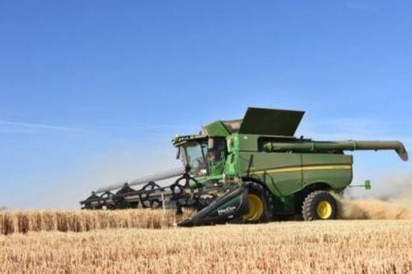 Lúa mì nhập khẩu tăng mạnh từ Úc, giảm mạnh từ Nga