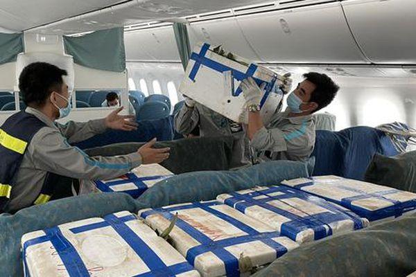 Xin ý kiến Bộ GTVT về việc 'Vua hàng hiệu' Johnathan Hạnh Nguyễn lập hãng hàng không