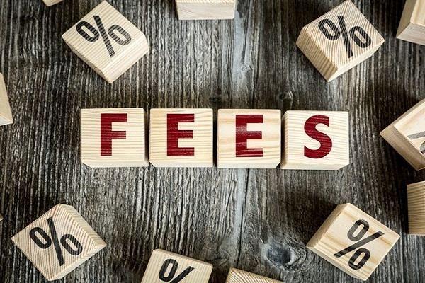 VPS thu phí dịch vụ hệ thống, nhà đầu tư bất bình