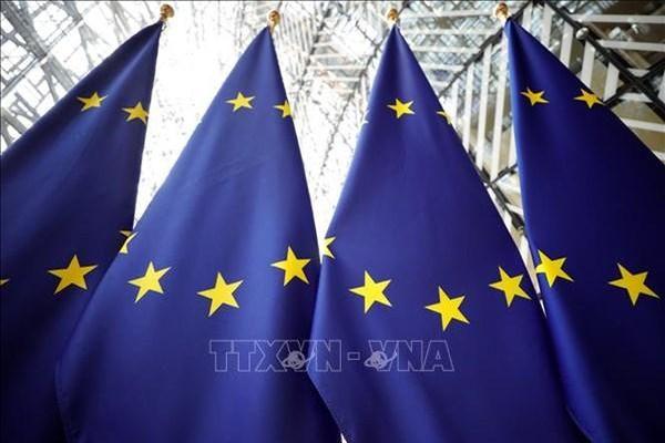 EU và 5 năm quyết tâm thực hiện minh bạch thuế