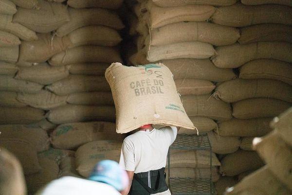 Giá cà phê hôm nay 18/6: Rớt giá thảm, nhà đầu cơ vội vã chốt giá; Cước vận tải 'đe dọa' giá xuất khẩu