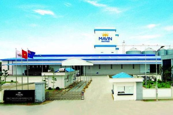 Kon Tum đồng ý để Tập đoàn Mavin làm tổ hợp nông nghiệp 650 tỷ, rộng gần 600ha