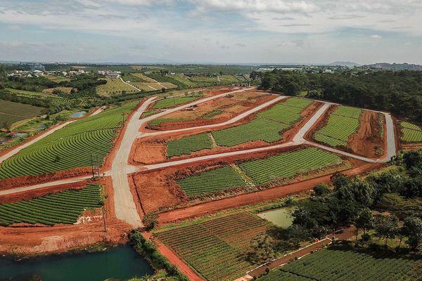 Thủ phủ chè Bảo Lộc bị băm nát bởi các dự án bất động sản
