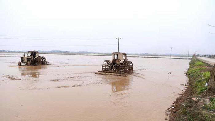 Lấy nước đổ ải, nông dân Bắc Ninh vẫn ra đồng ngày 26 Tết - Báo VOV
