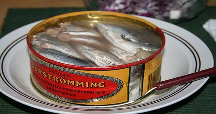 Choáng váng, nôn mửa khi ngửi mùi đặc sản Surströmming nức danh ở Thụy Điển  - Tạp chí Người Đưa Tin