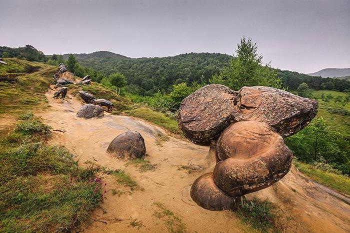 Ly kỳ loài đá độc nhất vô nhị có thể mọc như nấm ở của Romania - ảnh 3.