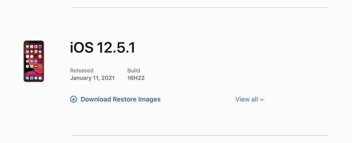 Apple bất ngờ phát hành iOS 12.5.1 cho người dùng các mẫu iPhone đời cũ