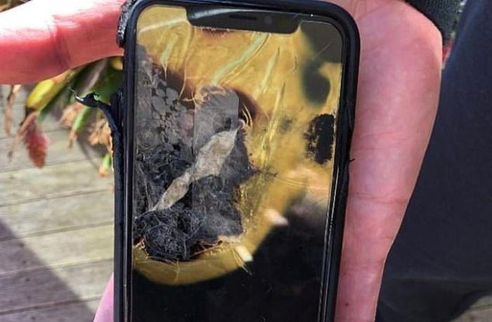Apple bị kiện vì iPhone X phát nổ, Apple Watch nóng quá mức