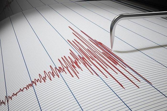 Động đất mạnh 4,6 độ tại Nhật Bản, không có cảnh báo sóng thần