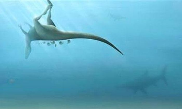 Phát hiện loài khủng long mới cùng họ hàng với khủng long bạo chúa
