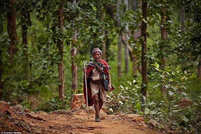 Tìm hiểu về cuộc sống của bộ tộc săn bắt, hái lượm cuối cùng ở Nepal ở thế kỉ 21