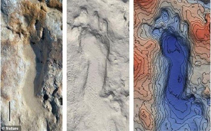 Đi bộ trên bãi biển, chạm trán đứa trẻ 100.000 tuổi nhảy múa trên cát