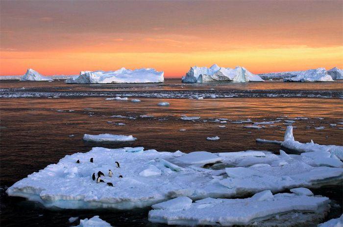 Mê mẩn trước những vẻ đẹp kỳ vĩ như 'một kỳ quan thế giới' ở Nam cực