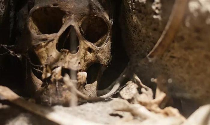 Phát hiện DNA cổ xưa nhất trên thế giới