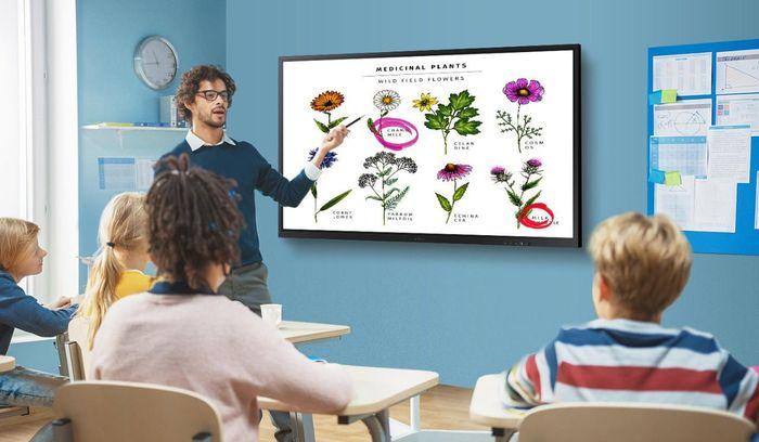 Samsung Flip 3 75' tầm cao mới dành riêng cho giáo dục