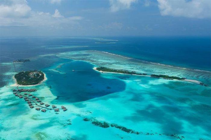 Ngủ cùng cá trong biệt thự sang chảnh dưới biển Maldives
