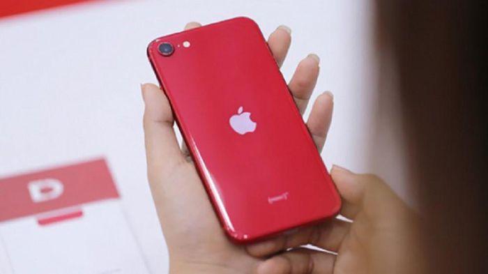 Vì sao iPhone SE 2020 sau gần 1 năm ra mắt vẫn bán chạy tại Di Động Việt?