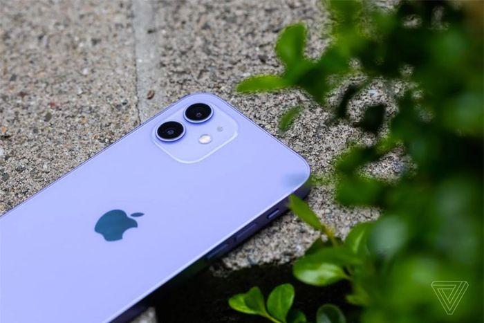 Nên mua iPhone 12 ngay thời điểm này hay chờ iPhone 13?