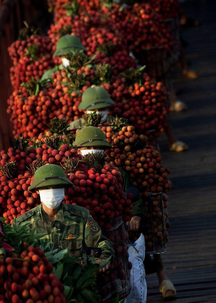 Một nghệ sĩ nhiếp ảnh từ Đồng Nai tự nguyện ra 'chia lửa' cùng tâm dịch Bắc Giang