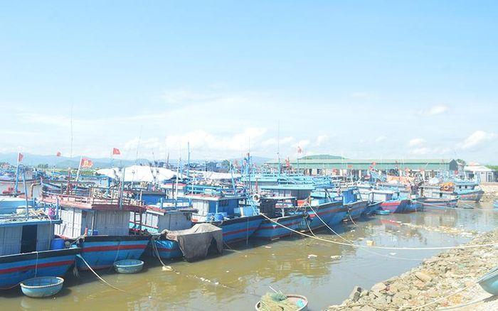Đề nghị cho tàu thuyền Quảng Ngãi vào khu neo đậu các tỉnh ven biển để tránh bão