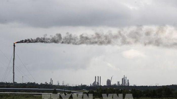 Quan chức EU kêu gọi WB loại bỏ đầu tư cho dự án nhiên liệu hóa thạch