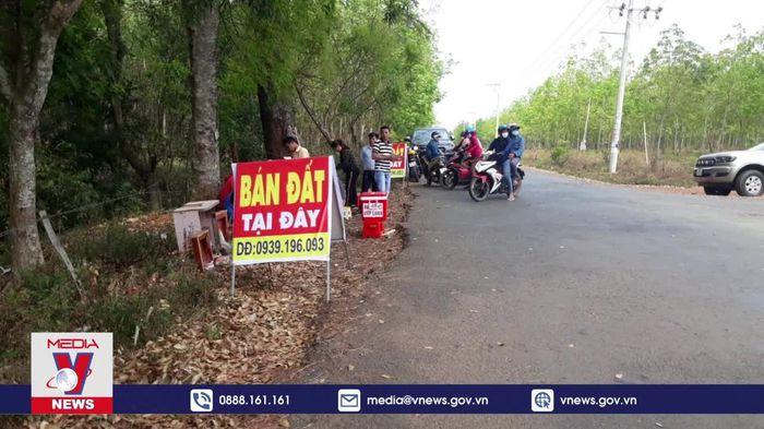Hàng trăm 'cò đất' dụ dỗ người dân khu vực sân bay Téc níc, Bình Phước