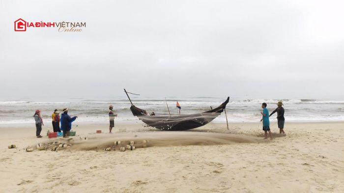 Những chuyến ra khơi nặng trĩu cá trích của ngư dân Thừa Thiên Huế