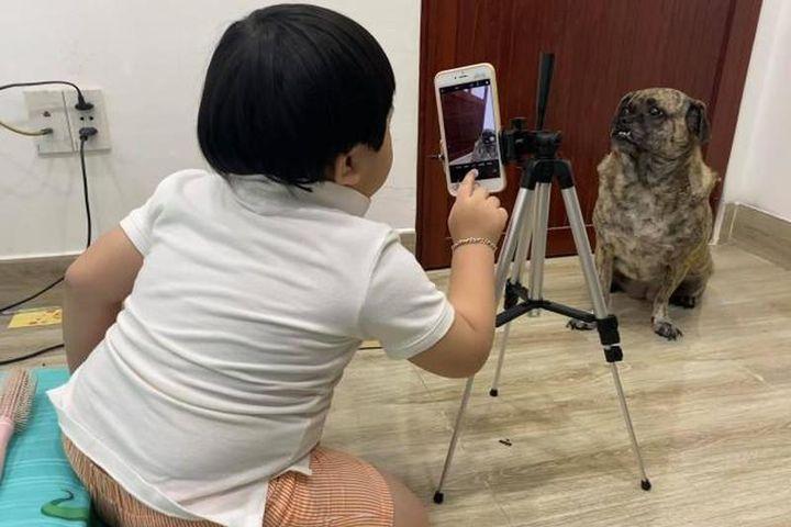 Cậu bé chụp ảnh cho chó cưng không nhịn được cười